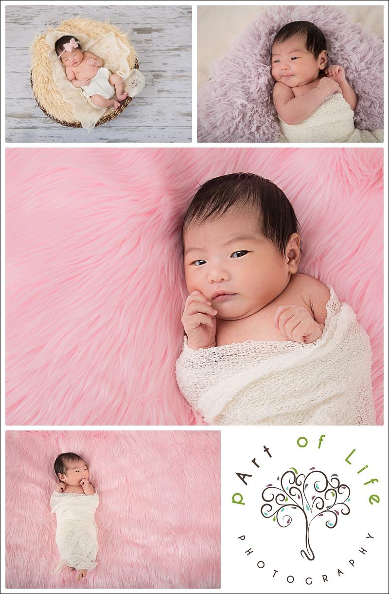 Newborn Photo Session, Troy Michigan