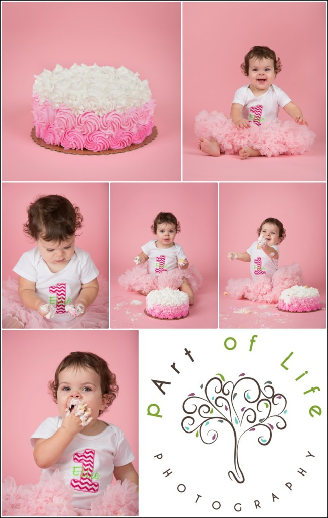 First Birthday Cake Smash Photo Session ~ Oakland Township photographer