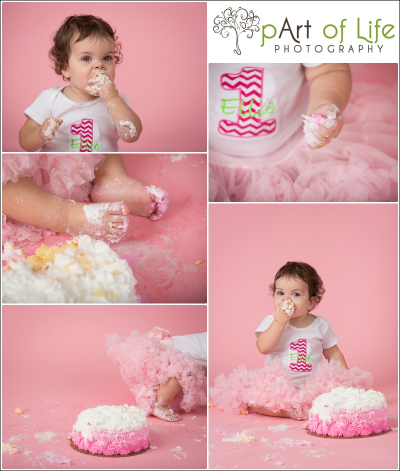 Cake Smash Photo Session ~ Oakland Township Photographer