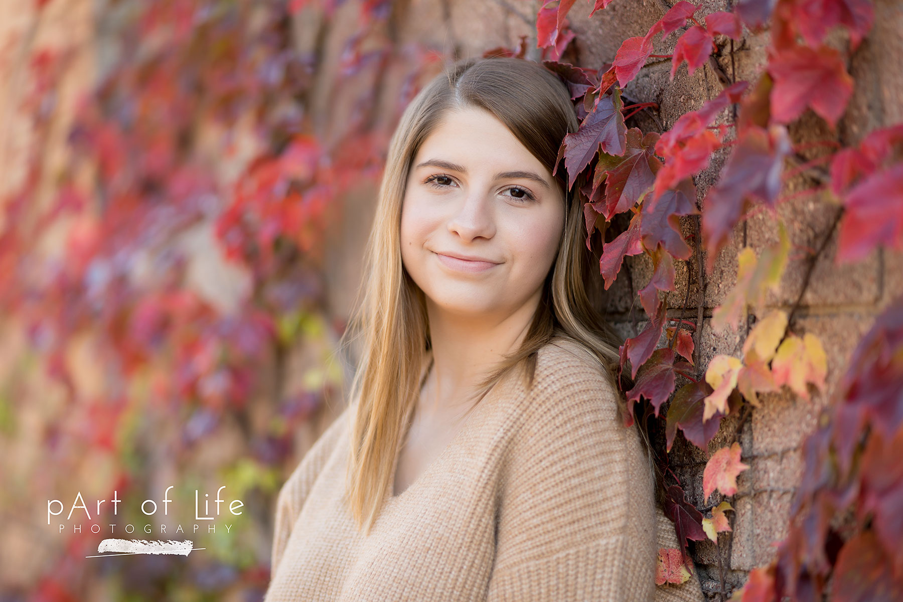 autumn photo session stoney creek rochester senior
