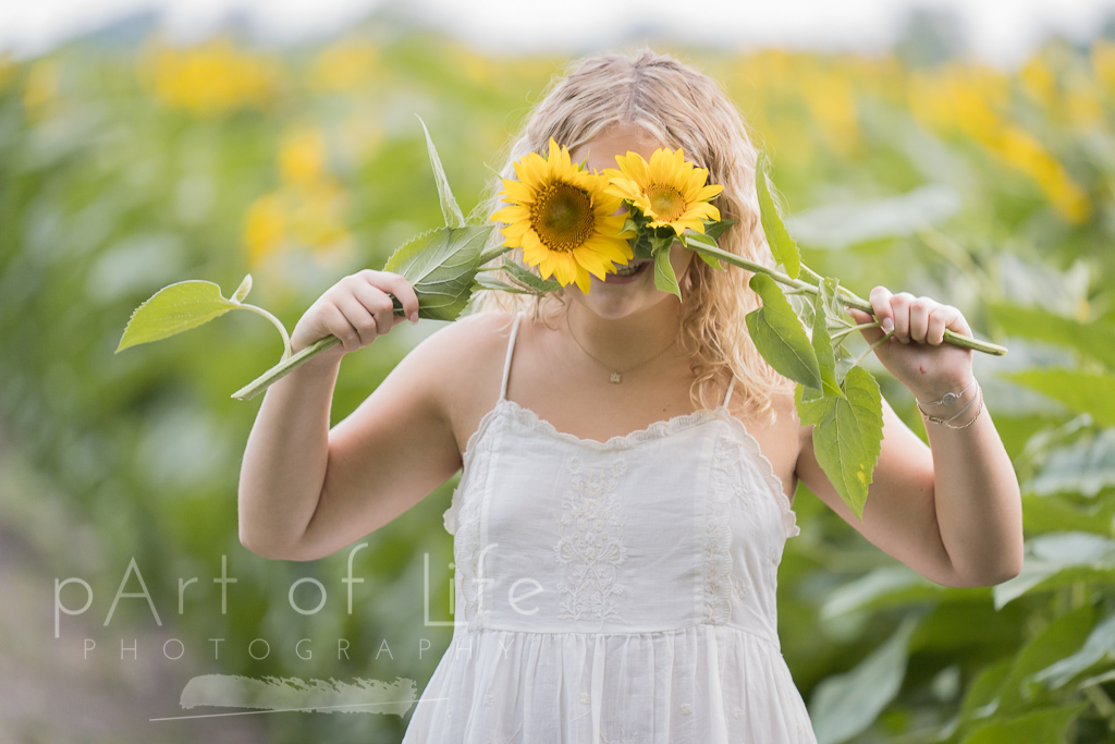 sunflower farm senior portrait session