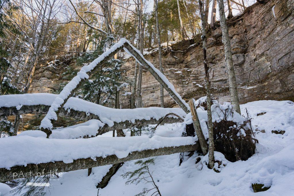 Upper Peninsula Nature Photography