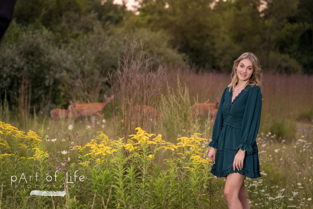 Senior photo session in Rochester MI with deer